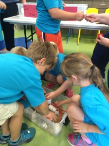 Children at the Sink/Float activity station in a PlayHouse classroom.
