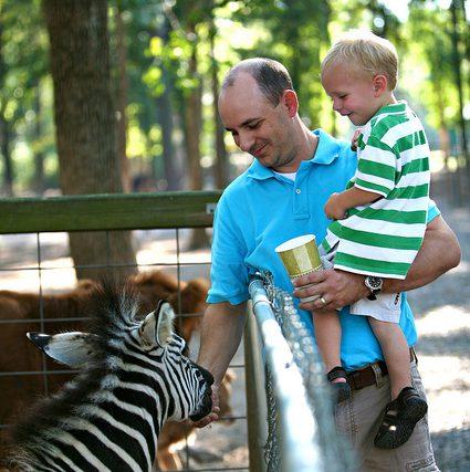 zoo-visit-2